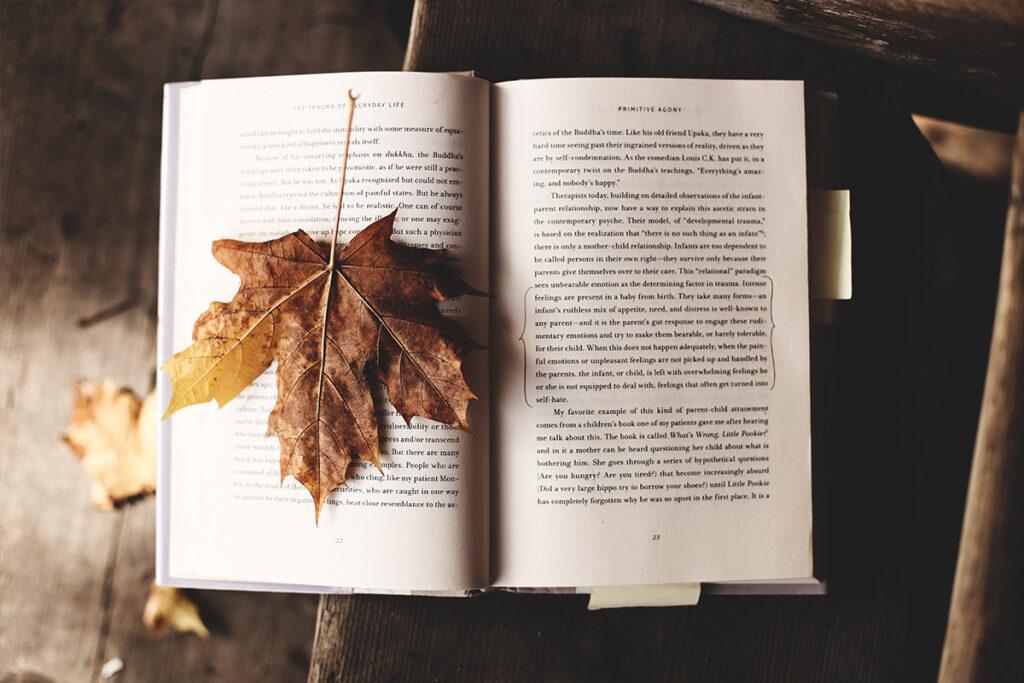 olvasni a szabadban
